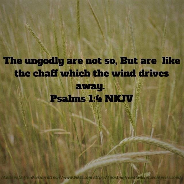 Psalms ch1 vs4 NKJV (2)