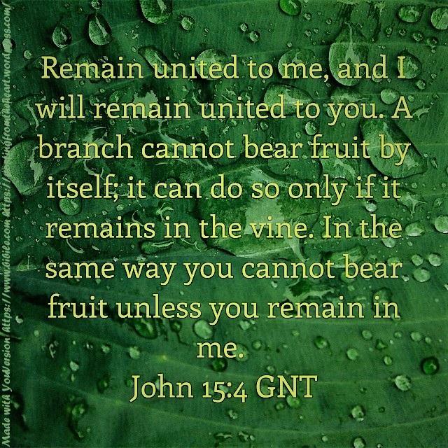 John ch15 vs4 GNT (2)